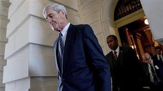 The Mueller Investigation By the Numbers - WSJDIGITALNETWORK