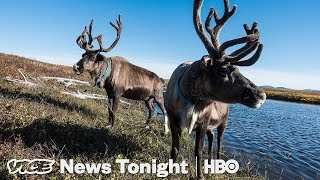 """Drunken Forests"" In Alaska Are Another Sign Of Melting Permafrost (HBO) - VICENEWS"