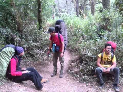 mahameru-dewa.izam cover.by ayam hutan youtube