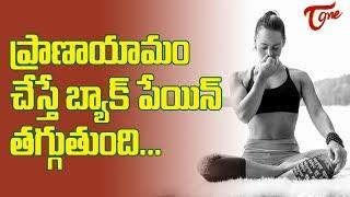 ప్రాణాయామం  చేస్తే  బ్యాక్ పేయిన్  తగ్గుతుందా || Can Pranayama Help Relieve Back Pain ? | TeluguOne - TELUGUONE