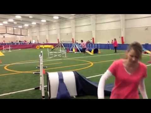 keeley agility 5-18-13 at Greater Toledo OTC