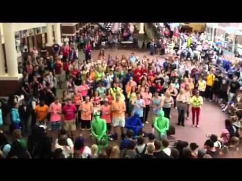 EVHS 2012 Flash Mob