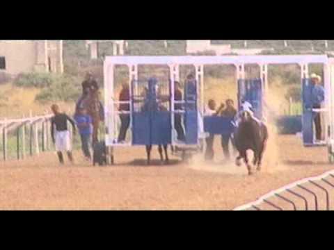 El Alacran vs La Catarina (Carreras de caballos)