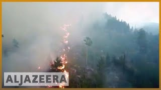 🇸🇪 Sweden wildfires: Worst drought in 74 years | Al Jazeera English - ALJAZEERAENGLISH