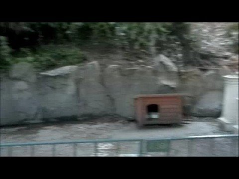 Abandoned Skyway Station of Disneyland