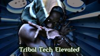 Royalty Free :Tribal Tech Elevated