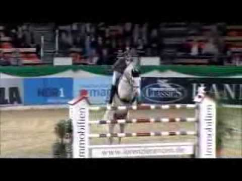 COLESTUS: stallion by Cornet Obolenky x Stakkato, Marco Kutscher, www.equine-evolution.com