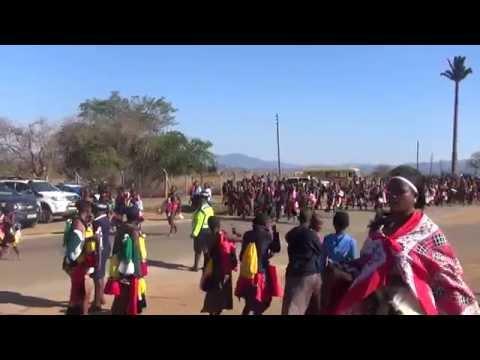Swazi Reed Dance Umhlanga 2014 [HD]