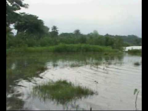 Participatory Video in Bangladesh - Fish culture in Mymensing -01