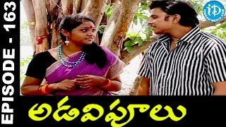 Adavipoolu || Episode 163 || Telugu Daily Serial - IDREAMMOVIES