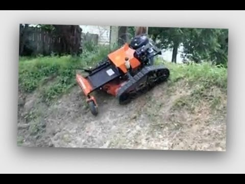 Remote Control Lawn Mowers for RAY WILLIAM JOHNSON Christmas