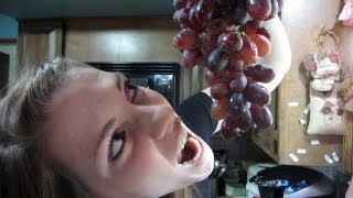 LET ME HAVE YOUR GRAPES!! (5-17-13 Day 733)
