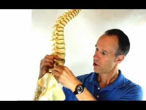 Herniated Disc Pain Relief Stretches - Back Pain Stretches