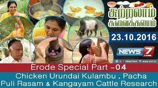 Chicken Urundai Kulambu , Pacha Puli Rasam & Kangayam Cattle Research @ Erode Special | Sutralam Suvaikalam | News7 Tamil