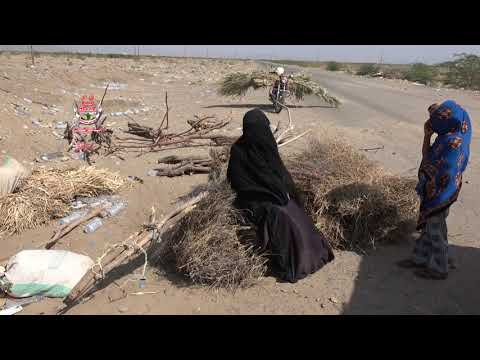 نزوح جماعي للعائلات من منازلهم في قرية الحُمينية في حيس بالحديدة بسبب طردهم من قبل مليشيات الحوثي