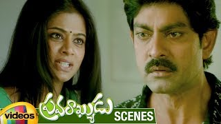 Priyamani Misunderstands Jagapathi Babu | Pravarakyudu Movie Scenes | Sunil | Mango Videos - MANGOVIDEOS
