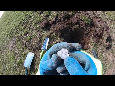 Metal Detecting Uk Finds ( 17 ) Pieces of Eight 1666 Cob Coin