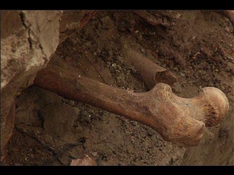 Раскопки костей