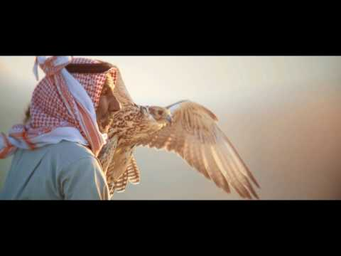 OPENING SEQUENCE FALCON FESTIVAL  2017 - اتفرج تيوب