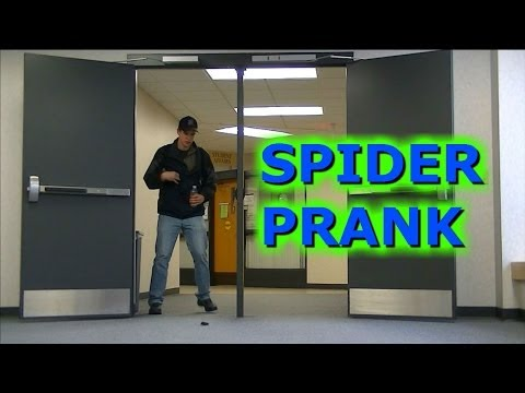 Scaring People With A Fake SPIDER