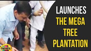 Delhi CM Arvind Kejriwal Launches the Mega Tree Plantation Drive Van Mahotsav | 5 Lakh Plantation - MANGONEWS