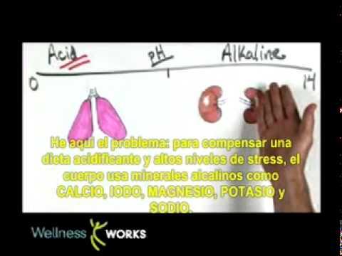 Importante Información: Alimentos ácidos y alcalinos