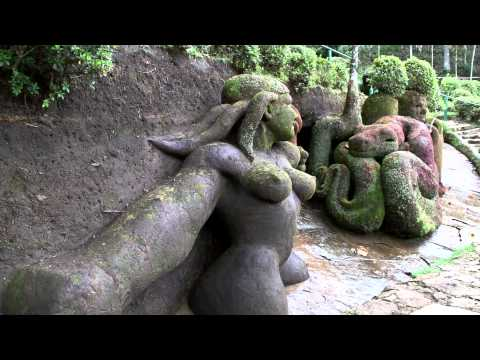 Nego's Garden