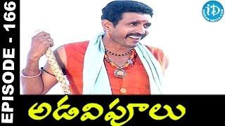 Adavipoolu || Episode 166 || Telugu Daily Serial - IDREAMMOVIES