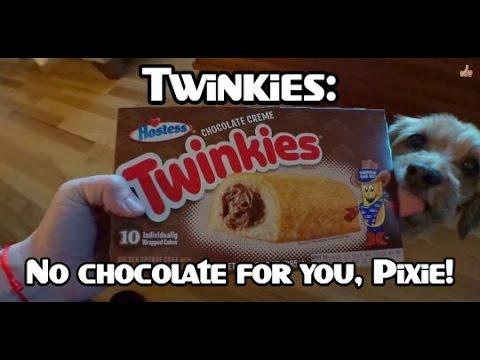 Chocolate Creme Twinkies Review