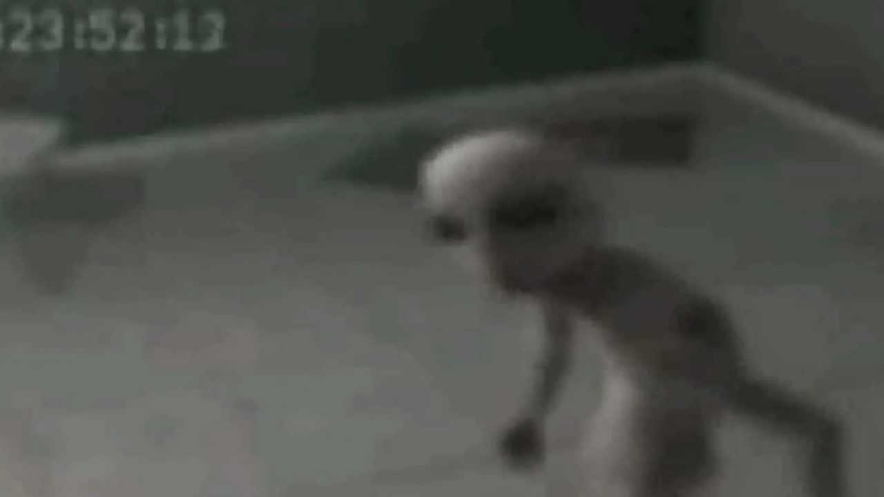 Penampakan Alien Nyata | Video CCTV Alien Asli di Bumi - YouTube