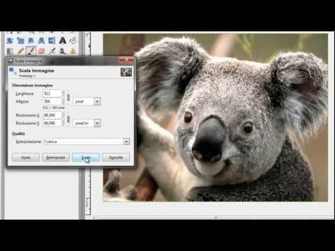 GIMP [ITA] - Ingrandire/rimpicciolire una foto