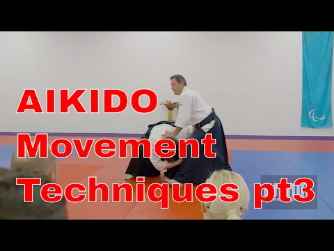 AIKIDO Movement Techniques Christian Tissier pt3