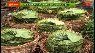 తమలపాకు రైతుల బతుకులు పండేదెన్నడు? | Major Loss Betel Leaves Cultivation Farmers | East Godavari | - CVRNEWSOFFICIAL