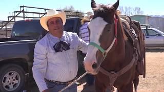 Saludos en Colonia Miguel Alemán (Miguel Auza, Zacatecas)