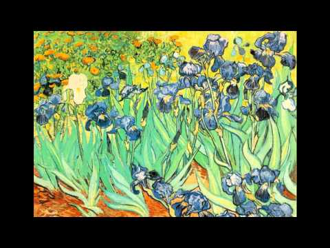 Vincent Van Gogh-Starry Starry Night-Don McLean