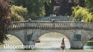 What to Do in Picturesque Cambridge - BLOOMBERG