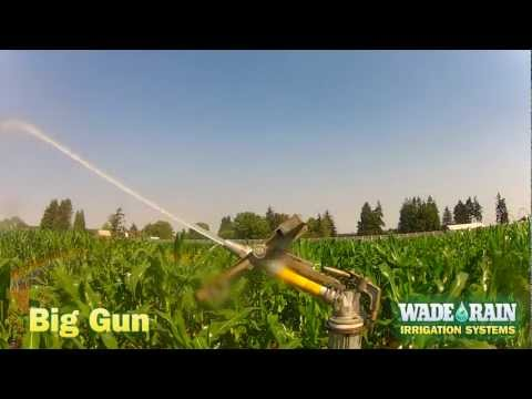 Big Gun Irrigation
