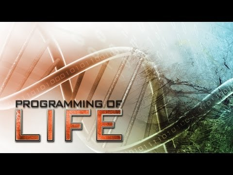 Programming of Life 2011 documentary movie, default video feature image, click play to watch stream online