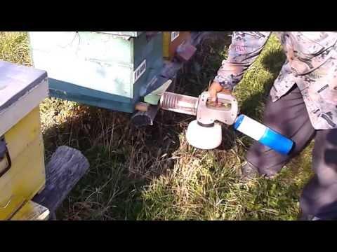 Tratament aplicat fam. de albine cu aparatul Fogger