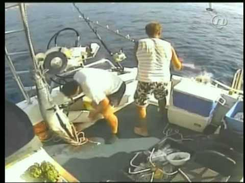 Big Game Fishing Dubrovnik Croatia
