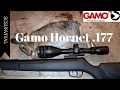 Gamo Hornet Pellet Rifle .177 Caliber Table-Top Review