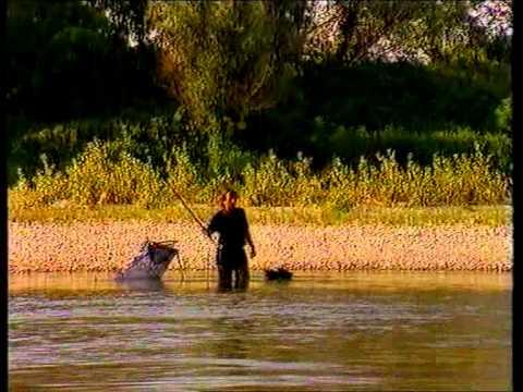 Top Pesca - Pesca alla Passata