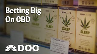 Betting Big On CBD: How To Start A Business Few People Understand | NBC News - NBCNEWS