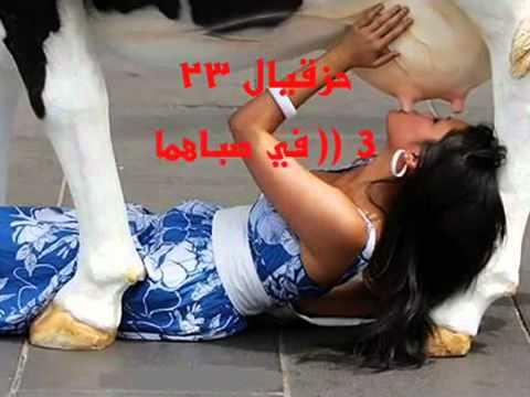 رضاعة الكبير عند النصارى - بالهنا والشفا يا شباب.mp4