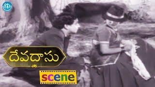 #Mahanati Savitri Devadasu Movie Scene - ANR Gifts A Necklace To Savitri    ANR, Savitri - IDREAMMOVIES