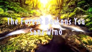 Royalty Free :The Forest Beckons You sans Wind