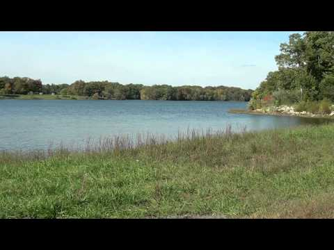 Lake video - Free Creative Commons background video 1080p HD