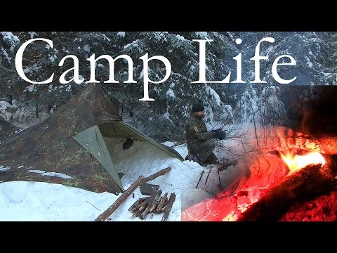 Camp Life - Solo Winter Camping in the Forest | Day 2