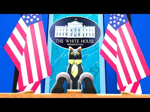 SIR MEOWS A LOT FOR PRESIDENT
