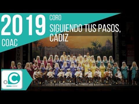 La agrupación Siguiendo tus pasos, Cádiz llega al COAC 2019 en la modalidad de Coros. En años anteriores (2018) concursaron en el Teatro Falla como Los nostálgicos de la transición, consiguiendo una clasificación en el concurso de Cuartos de final.